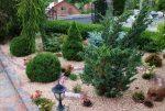 Как красиво посадить хвойники – 75 красивых идей в фото