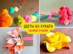 Цветы своими руками из цветной бумаги – Цветы из бумаги своими руками: схемы и шаблоны