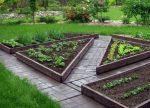 Оформление грядок – 70+ идей грядок на даче ✅️Все, что нужно знать огороднику! (2019)